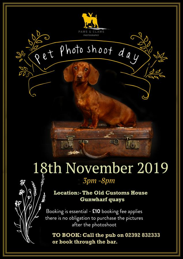 The Old Customs House | Pet Photoshoot